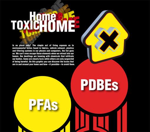 Home toxic home