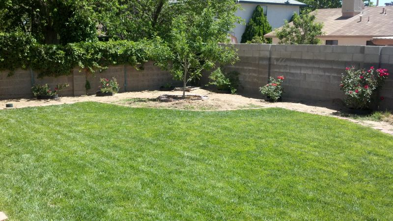 Lawn care landscaping in albuquerque nm affordable for Landscaping rocks albuquerque