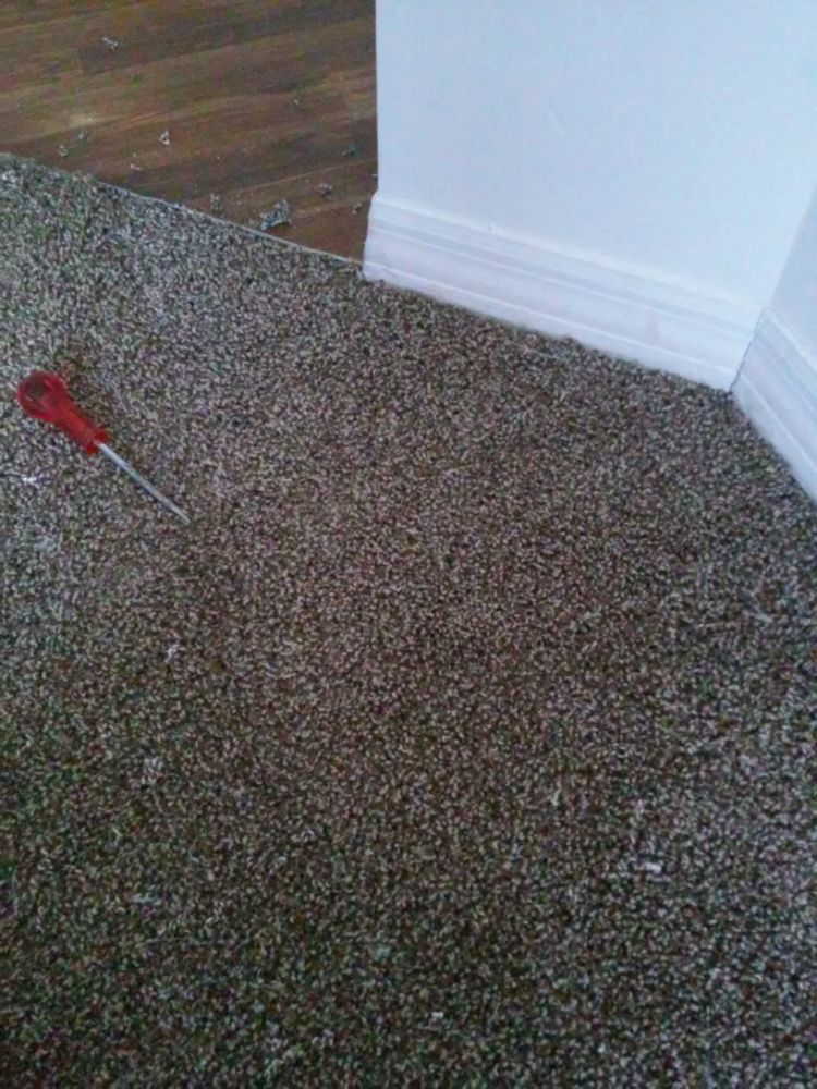 Carpet Repair And Installation In Jacksonville Fl