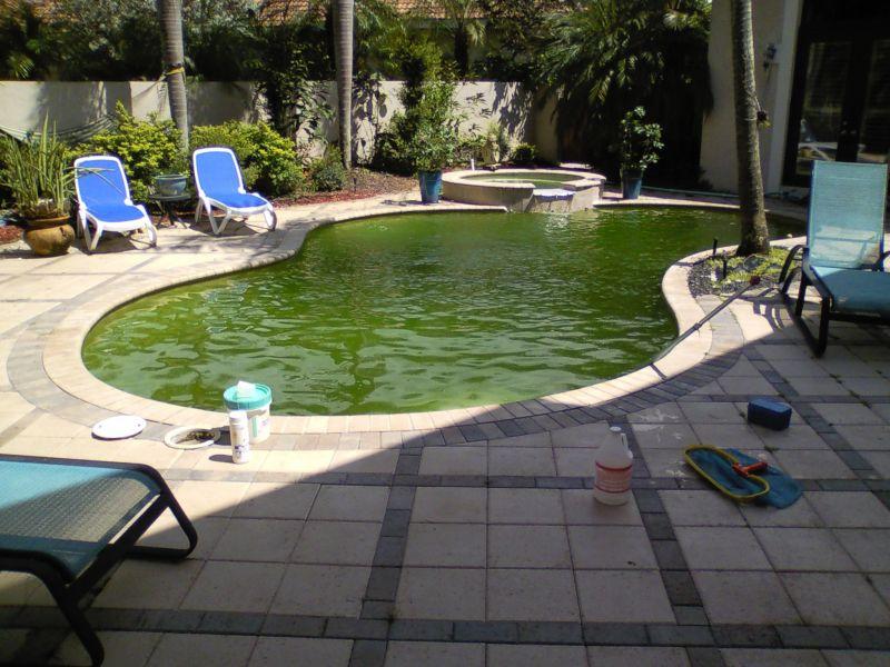 Pool Service And Pool Repair In Fort Lauderdale Fl