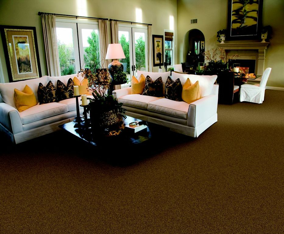 Carpet & Hardwood Products