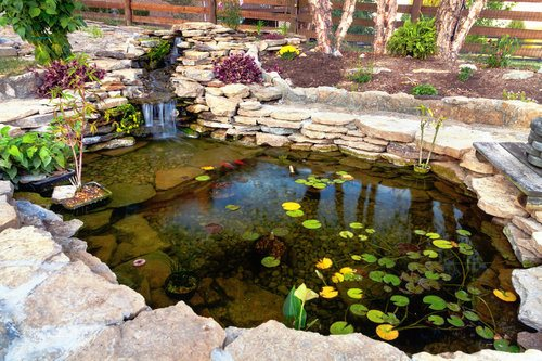 Beautiful pond surrounded by plants in the backyard of a home that creates a peaceful oasis