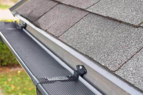 Installed Gutter Guard on Roof