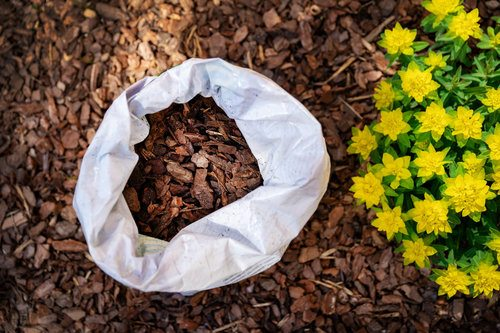 Bark mulch delivered in a bag next to some yellow flowers