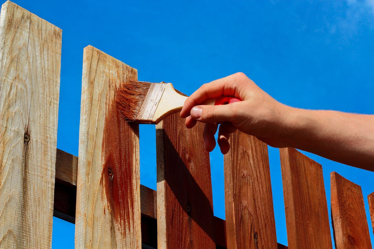 Professional painting a wood fence