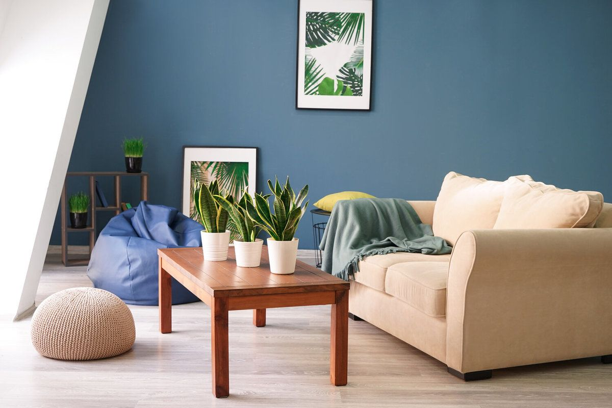 Modern Comfortable Room With Blue Painted Walls and a Beige Couch