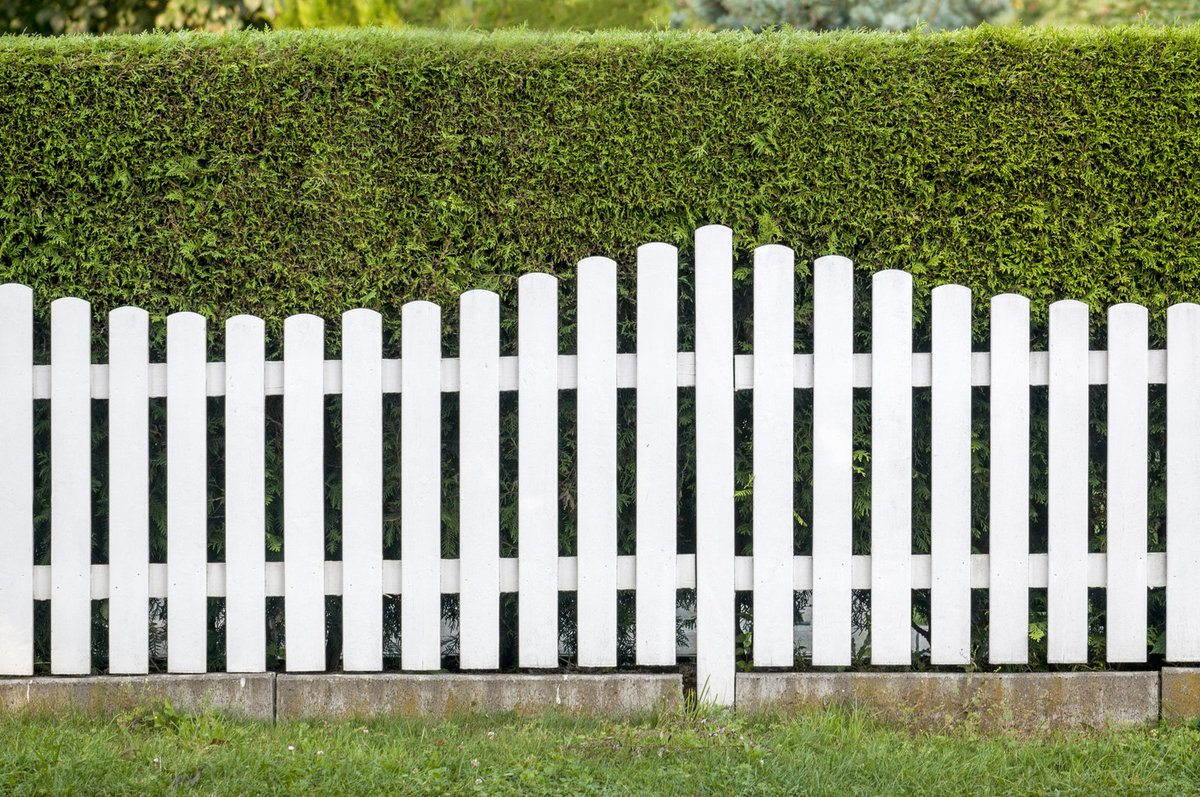 Arched white fence with bushes in the background