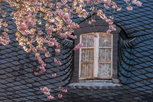 Cost to Repair Roof - Estimates and Prices at Fixr