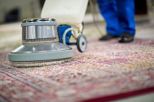 Contractor steam cleaning a rug