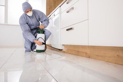 Professional termite exterminator treating an infestation by spraying termiticide under kitchen cabinets and appliances
