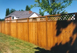 glossary term picture Privacy Fence