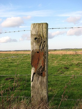 glossary term picture Fence Post