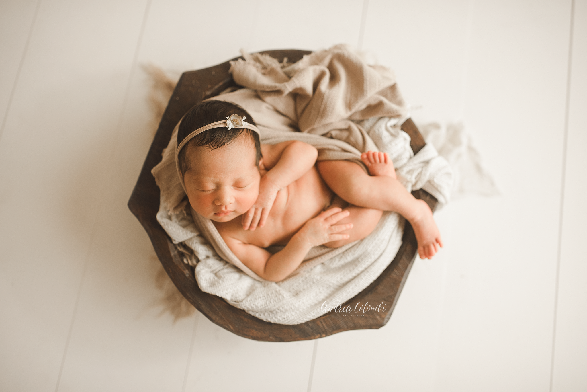 South Florida Newborn Photographer Maternity & Family Portrait Photographer