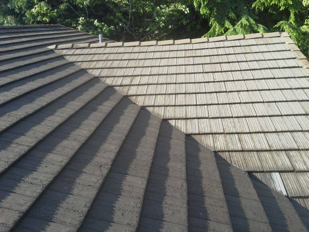 Roof Cleaning Solution In Seattle Wa Mossproof