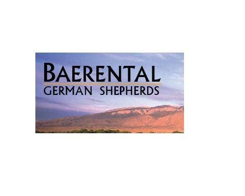 German Shepherd Breeder in Albuquerque, NM - Baerental