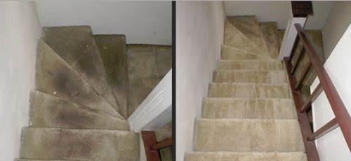 Carpet Cleaning Stairs Cost Hpricot Com