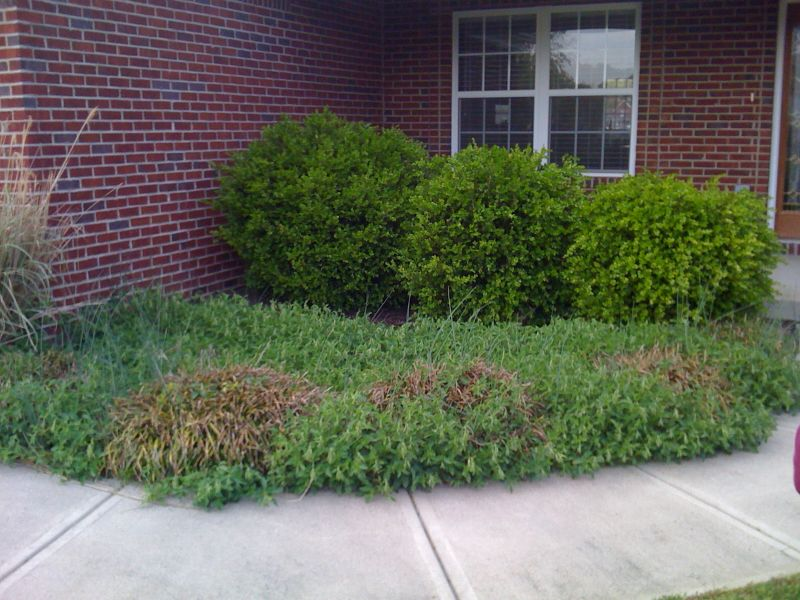 Lawn Care And Landscaping In Berea Ky Greenman