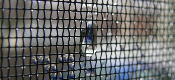 Window screen repairs and replacements in colorado springs for Home window screen replacement