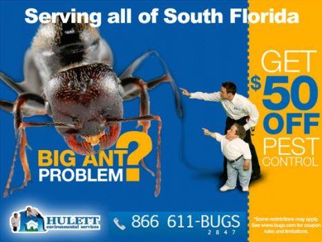 Pest Control In West Palm Beach Fl Hulett Environmental Services