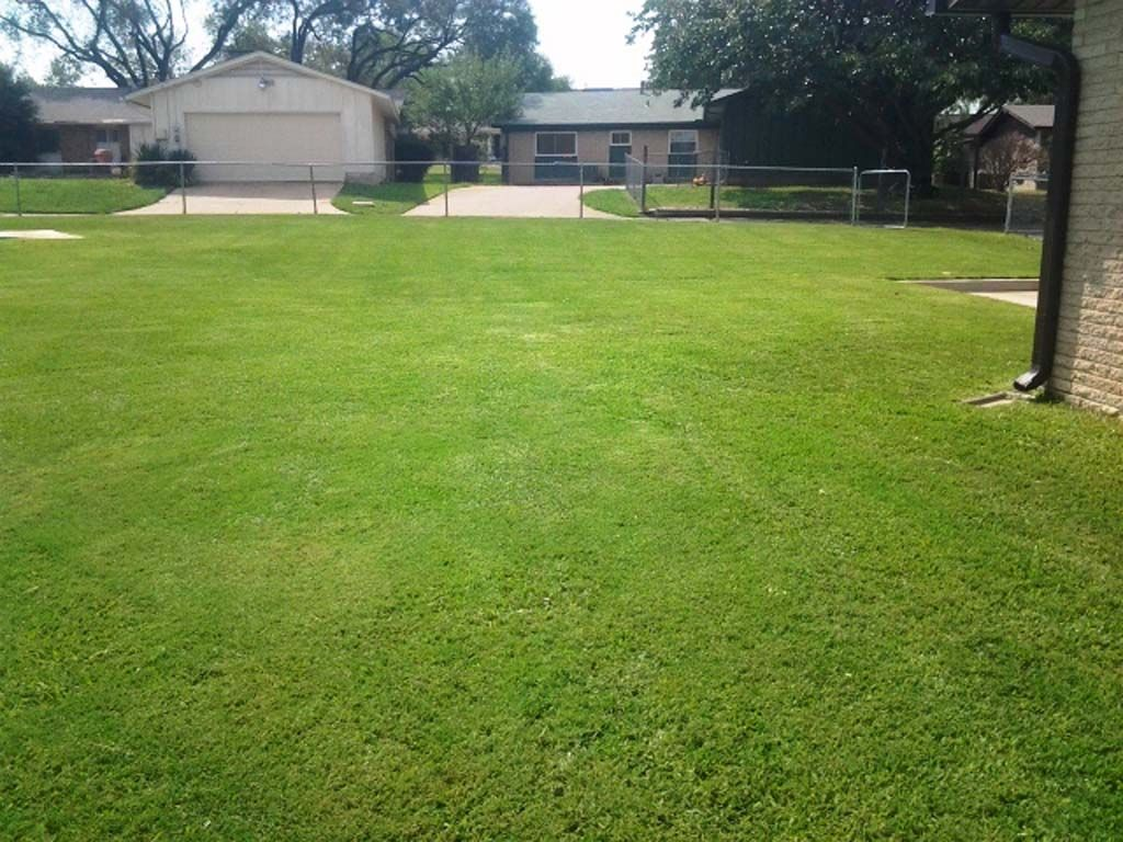 lawn care and maintenance in irving tx r u0026r grass cutting service