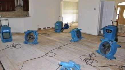Carpet Cleaning Uphosterly Cleaning Tile Cleaning Pet