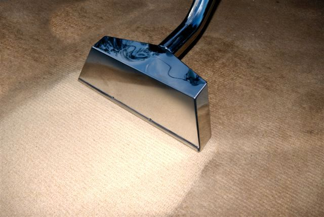 Mold Removal Water Damage Carpet Cleaning Arlington Hts