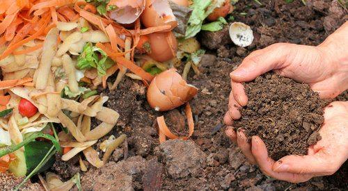 Organic vs Synthetic Fertilizer - Pros, Cons, Comparisons